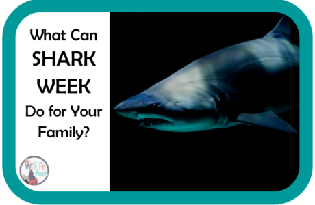 SHARK WEEK: Three Things It Can Do For Your Family