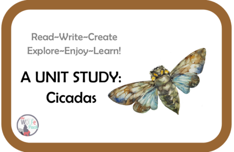 Cicadas: A UNIT STUDY Read~Write~Create~Explore~Enjoy~Learn